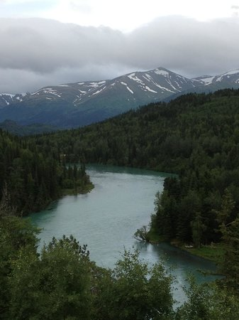 Kenai Princess Wilderness Lodge: Another view from the deck...