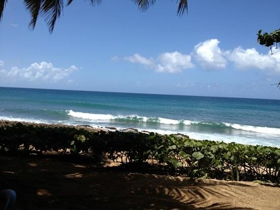 Salitre Meson Costero: Perfect ocean view!