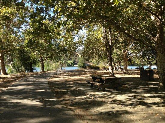 Los Gatos Creek Trail: Picnic tables at Lake Vasona