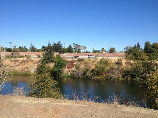 Los Gatos Creek Trail: Hear the freeway - pretend it's the sea!