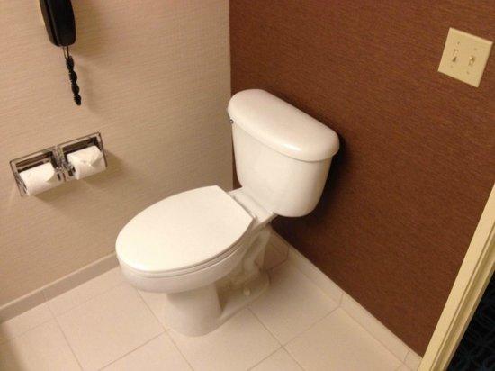 """Fairfield Inn & Suites Holland: """"Accessible"""" bathroom"""