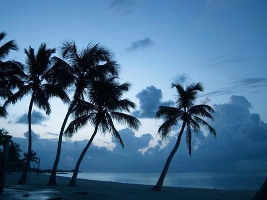 Comfort Suites Ocala: Key West