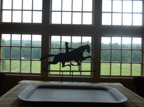 Old Stone Farm: Window Overlooking Meadow