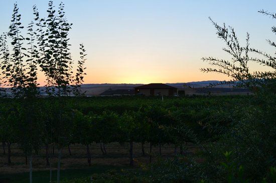 Walla Faces Inns at the Vineyard: Sunrise