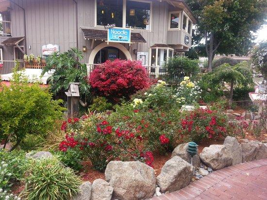 Carmel Mission Inn : lots of flowers