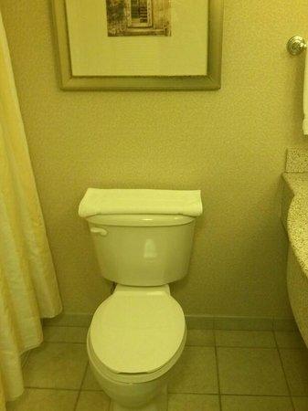 Hilton Garden Inn Miami Airport West: toilet