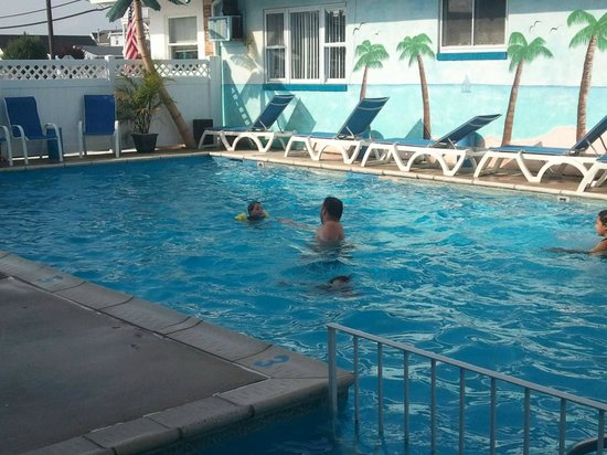 Surf Haven Motel : Surf Haven Pool