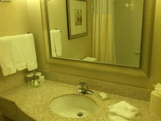 Hilton Garden Inn Miami Airport West: bathroom counter