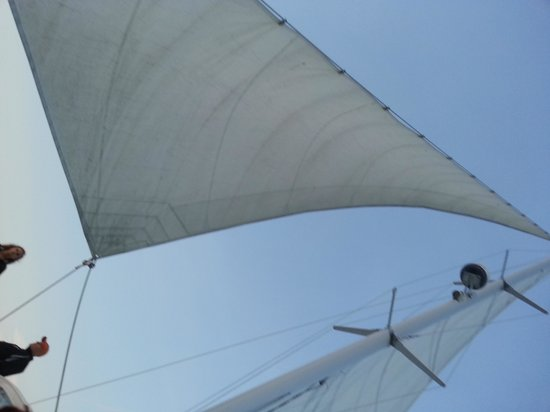 9th Wave Sailing Charters: peace!