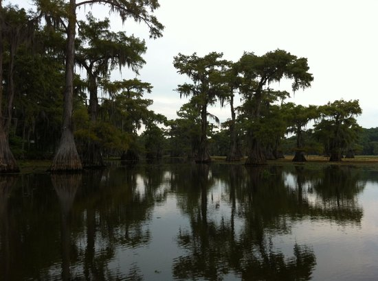 The Carriage House Bed and Breakfast: Caddo Lake 1