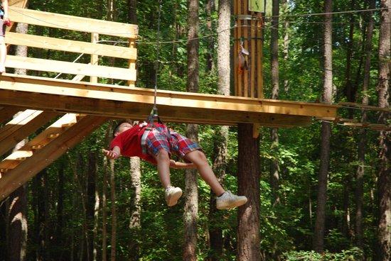 Go Ape Treetop Adventure Course: Zip lining