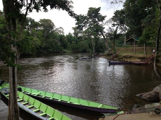 Anaula Nature Resort : view at anaula
