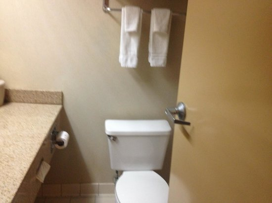 Holiday Inn Biloxi: Bathroom in 319
