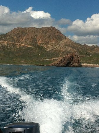Eco Adventures- Day Tours: tropico de cancer