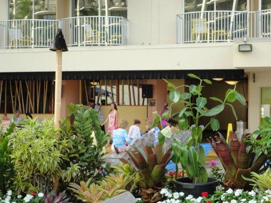 Aston Waikiki Beach Hotel: Musica tipica de Hawaii cada mañana a lado de la piscina donde sirven el desayuno