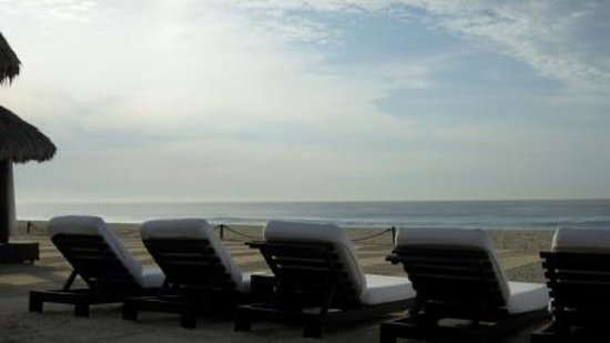 Cabo Azul Resort: Beach lounge chairs