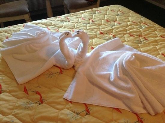Francis Scott Key Family Resort: Towelgami