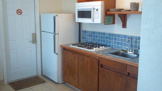 Fountain Cottages Inn : kitchen