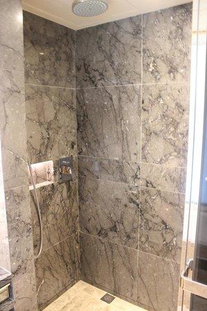 Royal Plaza Hotel: shower