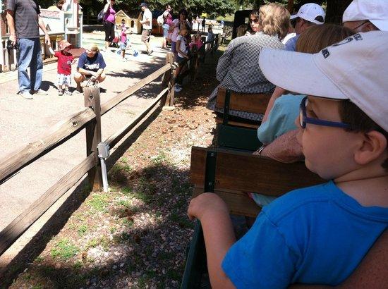 Tiny Town: train ride