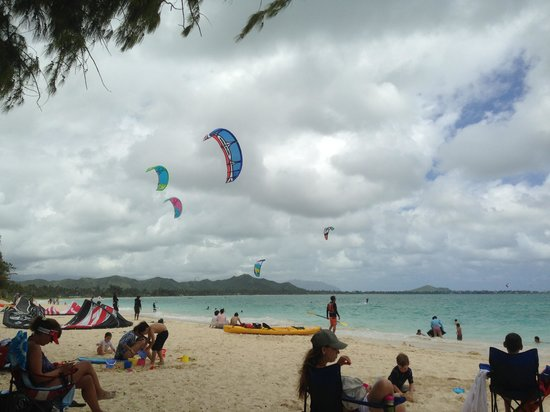 Two Duck Inn: Kite surfing at Kailua Beach