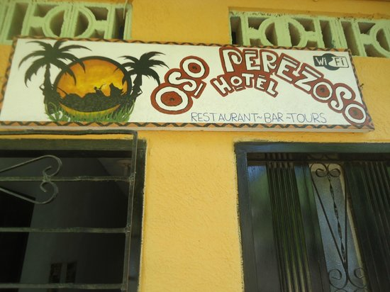 Hotel Oso Perezoso : Entrada