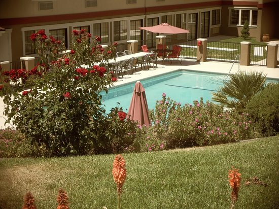 Best Western Plus Colony Inn: Looking down on the pool