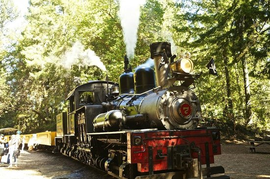 Roaring Camp & Big Trees Narrow-Gauge Railroad: Shay engine
