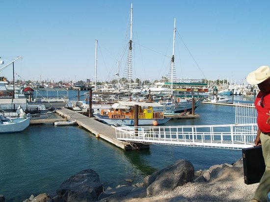 Old Port : Marina del Viejo Puerto