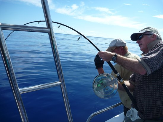 Marine Adventures - Carina Deep Sea Fishing Charters : It's going to be a beauty