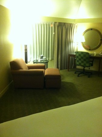 Hilton Chicago/Indian Lakes Resort: Sitting area in king size room..very spacious