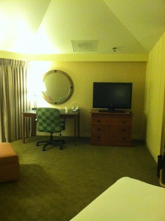 Hilton Chicago/Indian Lakes Resort: Seating area/tv in king size room