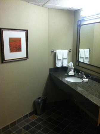 Hilton Chicago/Indian Lakes Resort: Nice bathrooms...very spacious