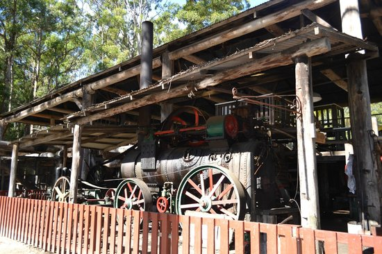 Timbertown Wauchope : Steam Engine