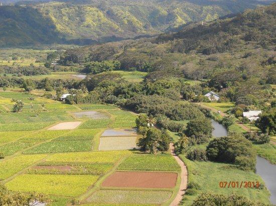 Kauai Beach Villas: Wailua River farmland overlook