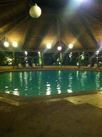 Hilton Chicago/Indian Lakes Resort : Huge Pool 10' deep