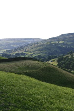 Gunnerside, UK: View from the drive