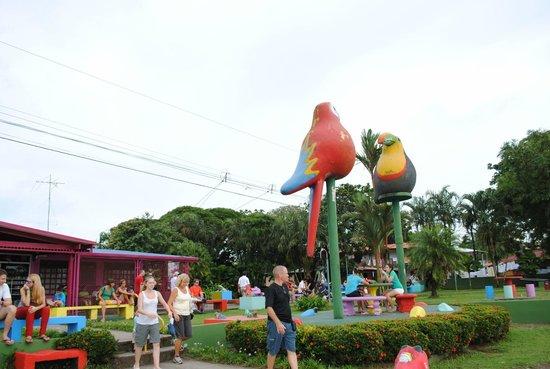Pachira Lodge: Tortuguero Village tour