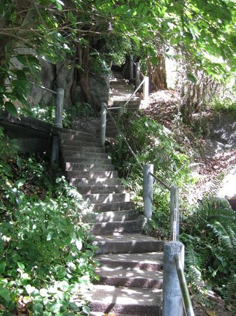 Plaa's Thansadet Resort: Section of stairs to Plaa's restaurant and bungalows