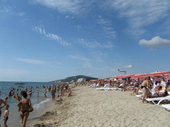 Hotel Kompas: пляж