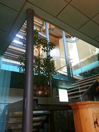 Agriturismo Vedova: scala di accesso al piano superiore dalla cantina al ristorante