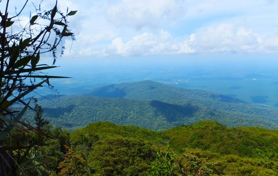 Gunung Ledang (Mount Ophir) : view from the peak
