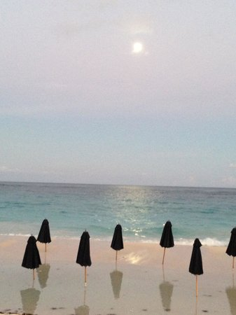 Mickey's Beach Bistro and Bar : moon rising
