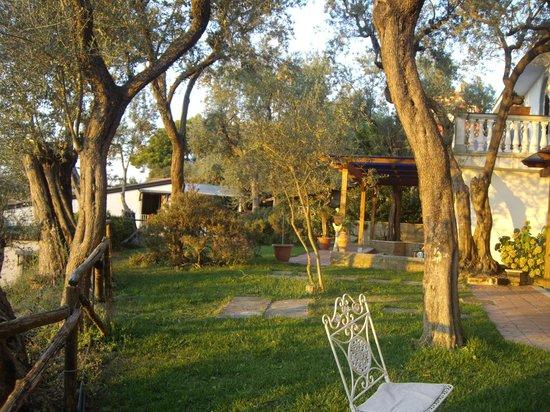 Villa Giovanna: Il giardino