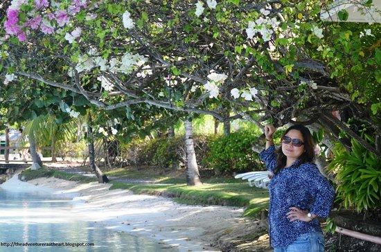 Plantation Bay Resort And Spa: lush floral and greens
