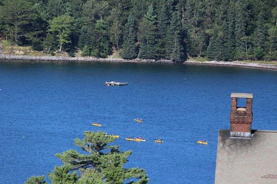 Atlantic Eyrie Lodge: Kayakers in Frenchman Bay