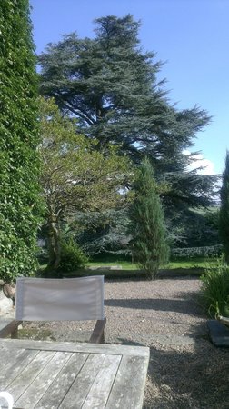 Austwick Hall: Superb Gardens