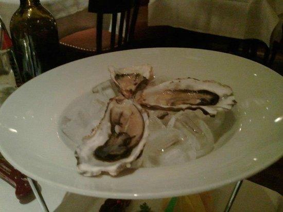 Dressler: Oysters