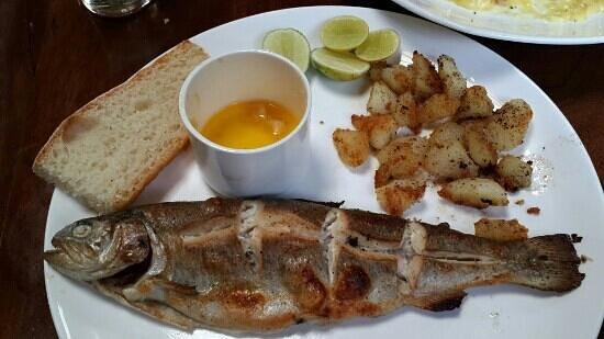 Johnson Lodge: fab food at the restaurant