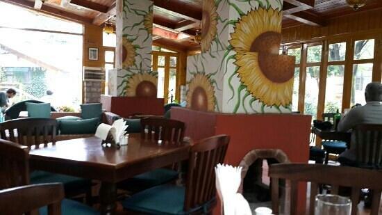 Johnson Lodge: johnson cafe